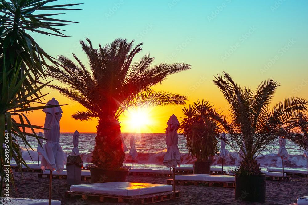 Fototapeta Beautiful landscape at sunrise. Palm trees and beach at the Black sea in Bulgaria