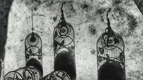 Tablou Canvas Shadows Of Birdcage On Footpath