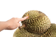 Isolated Pile Of Fresh Durian ...