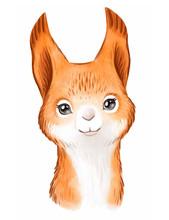Cute Squirrel Face Watercolor ...