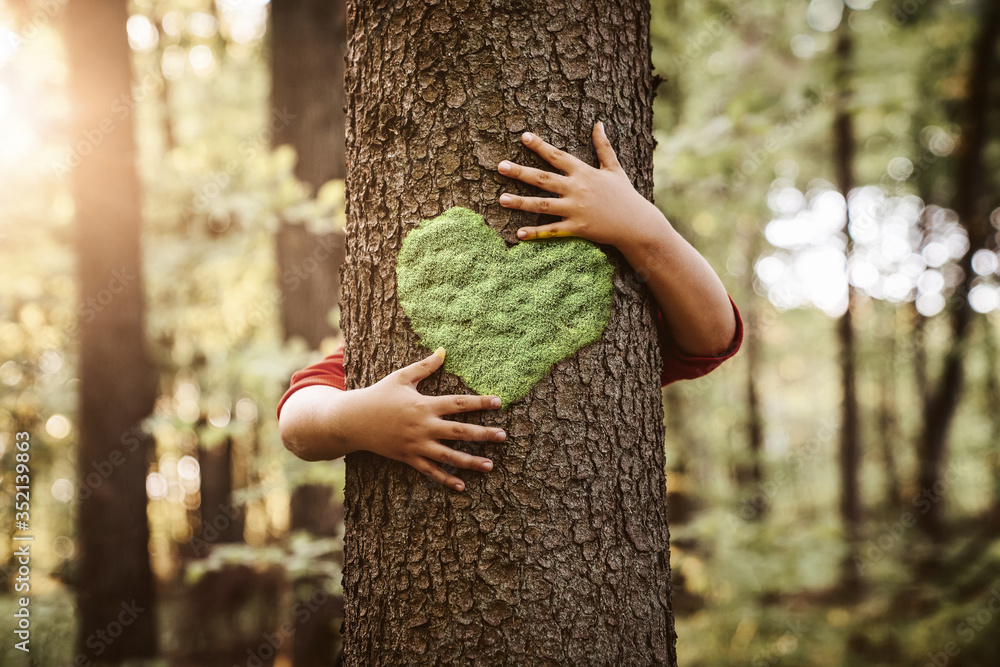 Fototapeta Nature lover, close up of child hands hugging tree with copy space