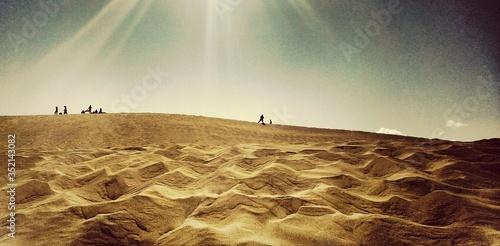 Fotografia Desert In Sunlight
