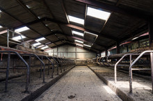 An Empty Cattle Feeding Shed. ...