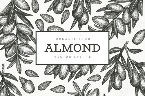 Photo Hand drawn sketch almond design template