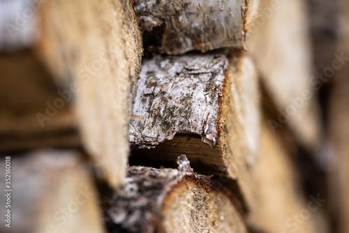 Drewno brzozy na opał - 352160018