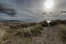 Grass On Beach With Clouds In Sky