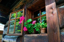 Summer Flowers In The Log Cabin Window