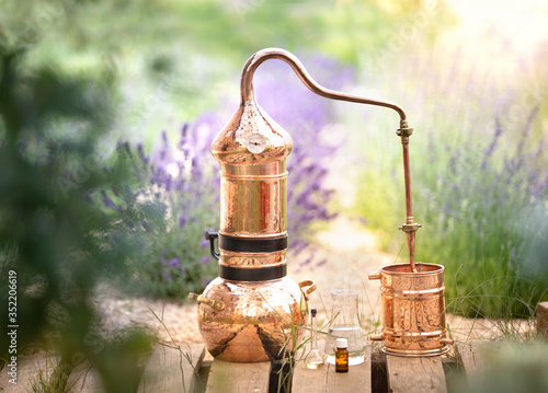 Photo Distilling apparatus alembic with esential oil between of lavender field lines