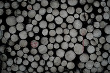 Full Frame Shot Of Stacked Logs
