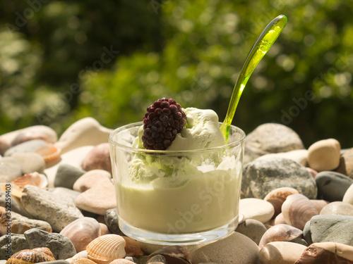 Fotografija glass bowl of ice cream with dewberry on beach stones