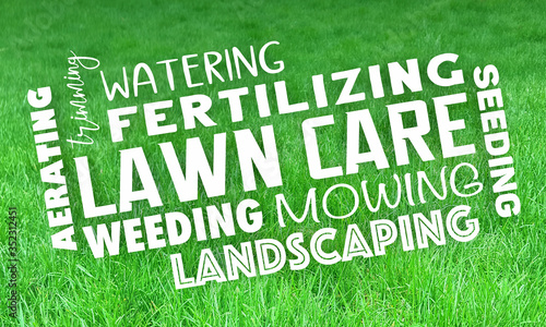Lawn Care Service Landcaping Mowing Grass Trimming 3d Illustration Wallpaper Mural