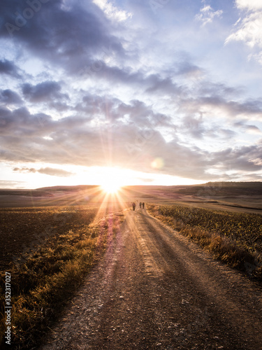Fototapety, obrazy: Road Amidst Agricultural Field Against Sky During Sunset