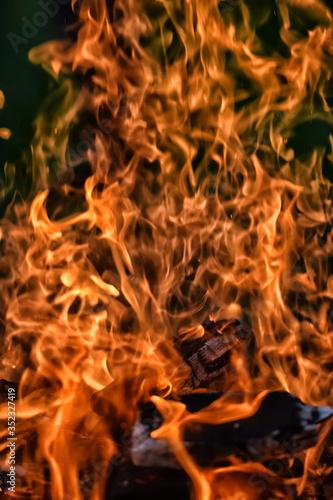 beautiful summer campfire flame