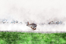 Watercolor Painting Of A Bunny...