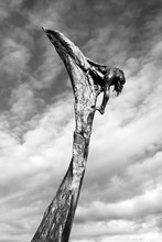 Low Angle View Of Statue On Dead Tree Against Sky