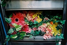 High Angle View Of Flowers In Mailbox