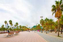Barcelona, Spain. Wide Sidewal...