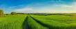 Leinwandbild Motiv Scenic View Of Rice Field Against Sky