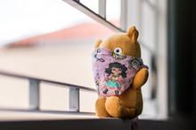 Teddy Bear In Isolation