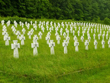 Cemetery Of Ukrainian Soldiers...