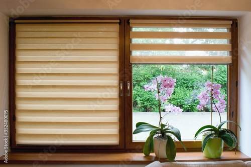 Foto Window roller, duo system day and night.  Cozy home interior.