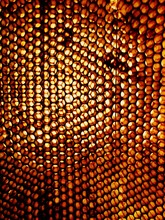 Full Frame Shot Of Beehive