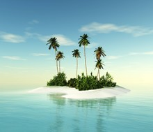 Island With Palm Trees In The ...