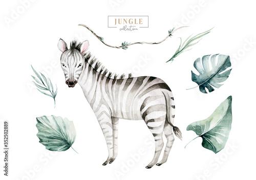 Hand drawn watercolor tropical zebra decoration Fotobehang