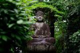 Buddah Statue in Japan