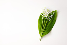 Lily Of The Valley, May Bells ...