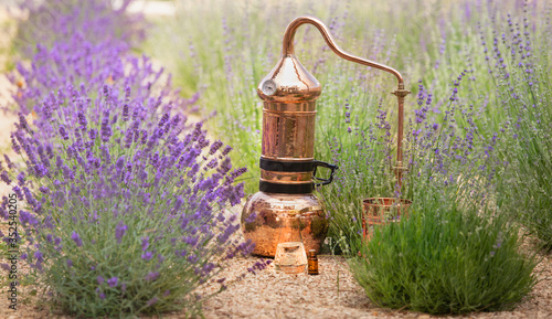 Distilling apparatus alembic with esential oil between of lavender field lines Wallpaper Mural