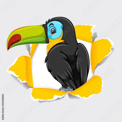 Background template design with wild toucan bird Fotomurales