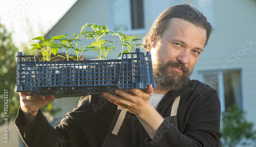 man in backyard with seedling plant, gardening concept #352623237