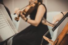 An Elegant String Quartet Cons...