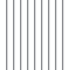 Prison metal bars or rods isolated on white background. Realistic fence jail. Way out to freedom. Criminal or sentence concept. Vector illustration.