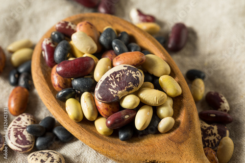 Raw Dried Organic Bean Assortment Canvas Print