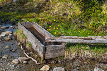 Rustikaler Holzbrunnen im Wald