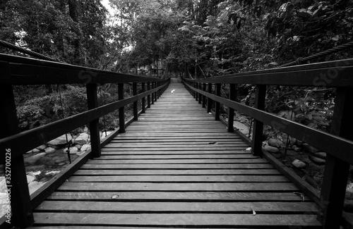 Photo Empty Footbridge In Forest