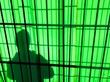 canvas print picture - Shadow Of Man Seen Through Green Window