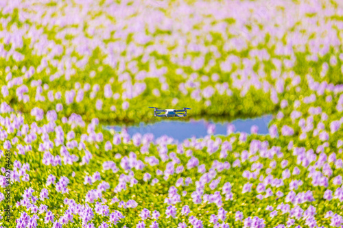 Photo A droid flying on top of the sea of flower (Common water hyacinth blossom) in Ho