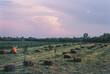 Leinwanddruck Bild - Hay Bales On Field Against Sky