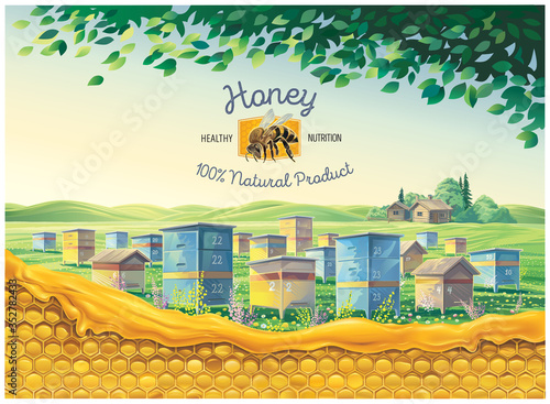 Fototapeta Bee apiary in the rural landscape with honeycomb in the foreground and a symbolic illustration of a bee as a design element obraz