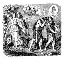 Expulsion From The Garden Of Eden, Vintage Illustration