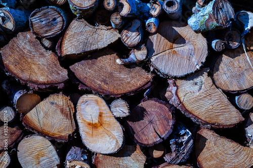 Canvastavla pila de trozos de leña seca cortada con textura