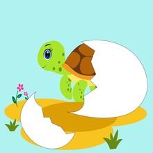 Cute Cartoon Turtle Illustrati...