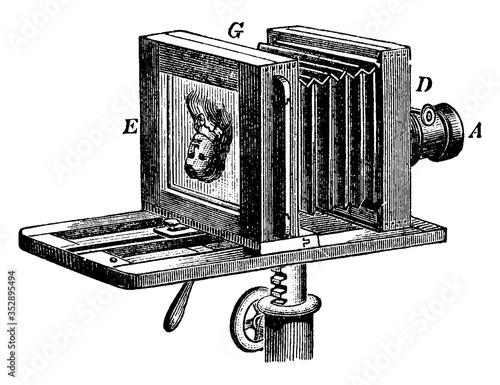 Cuadros en Lienzo Bellows Camera, vintage illustration.