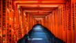 Leinwanddruck Bild - 京都 伏見稲荷 鳥居 ~ Fushimi Inari Shrine, thousands of vermilion torii gates, Kyoto, Japan ~