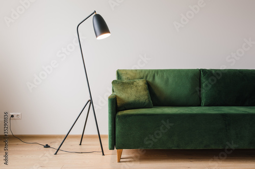 Fotomural green sofa with pillow near metal modern floor lamp