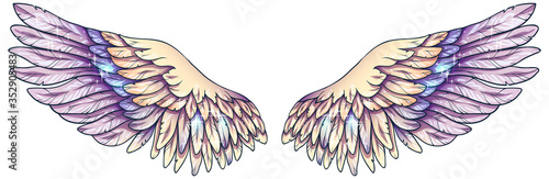 Beautiful magic glowing light tender yellow violet angel wings, vector