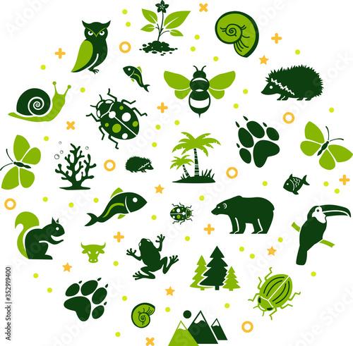 wildlife / biodiversity vector illustration Fototapete